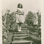 Magdaléna Husárová v otcovskom vinohrade