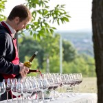 We evaluated by a seven glasses method, where all the samples are available simultaneously